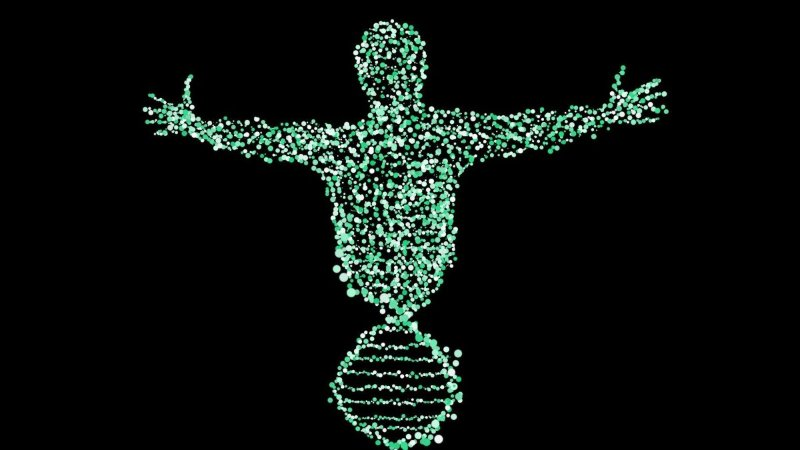 Deepvariant el aporte de google para la secuenciaci n del for En 2003 se completo la secuenciacion del humano